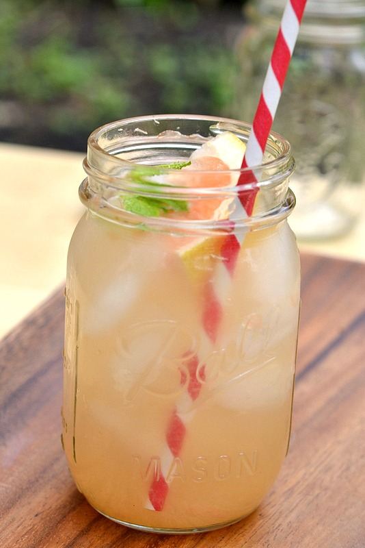 Drink skinny southern style gin cocktails the realistic for Best mixers for gin