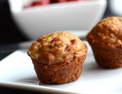 Cranberry Banana Oat Mini Muffins | The Realistic Nutritionist