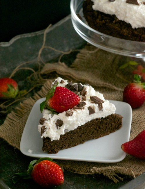 Grain free chocolate avocado cake