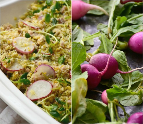 tuna couscous radishes